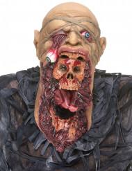 Máscara de látex zumbi devorador adulto Halloween