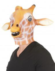 Máscara girafa látex adulto