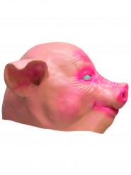 Máscara porco látex adulto