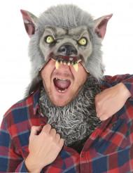 Máscara de látex Homem-lobo adulto