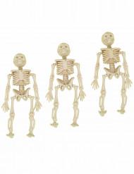 3 Decorações esqueletos
