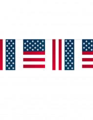 Grinalda de bandeirolas USA