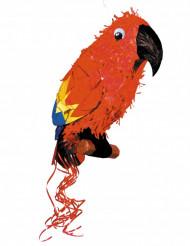 Pinhata Papagaio de pirata