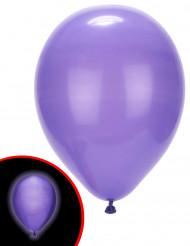 5 Balões LED lilás Illooms®