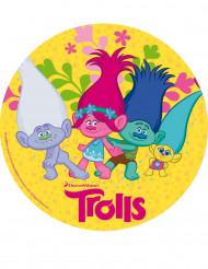 Folha de açúcar Trolls™ 20 cm