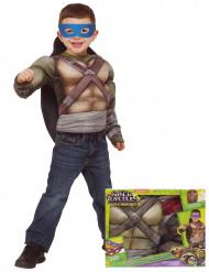 Disfarce luxo Tartarugas Ninja™ musculoso com casca