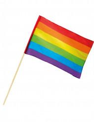 Bandeira Arco-íris 30 x 45 cm