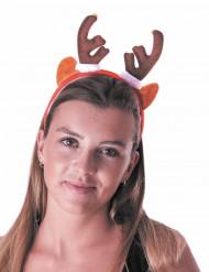 Bandolete rena com guizos adulto Natal