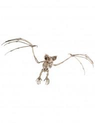 Decoração para pendurar esqueketo de morcego Halloween