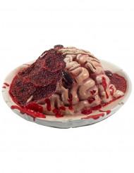 Decoração prato com cérebro em decomposição Halloween