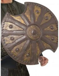 Escudo de bronze 50 cm