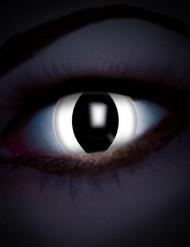 Lentes fantasia olho réptil branco adulto