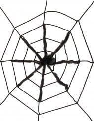 Teia de aranha gigante preta