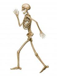 Decoração esqueleto caminhando Halloween bege