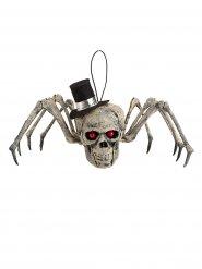 Esqueleto aranha com cabeça de esqueleto