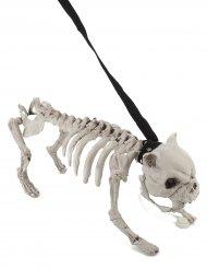 Decoração Cão esqueleto com trela luminosa e sonora