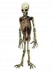Decoração esqueleto monstruoso Halloween