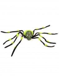 Aranha gigante com caveira preta e verde