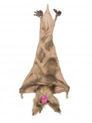Morcego castanho para pendurar Halloween