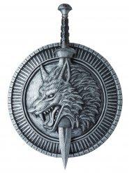 Espada e escudo de guerreiro do lobo adulto