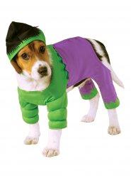 Disfarce para cão Hulk™