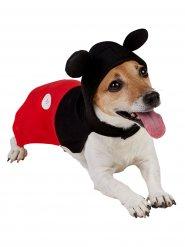 Disfarce para cão Mickey Mouse™