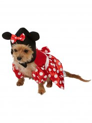 Disfarce para cão Minnie Mouse™