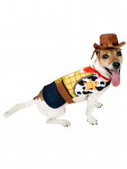 Disfarce para cão Woody™ Toy Story™