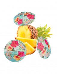 6 Guarda-chuvas para cocktails Havaí Party