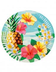 6 Pratos de cartão Havaí party