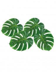 4 Folhas de palmeira