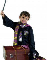 Cofre de disfarce Harry Potter™ criança