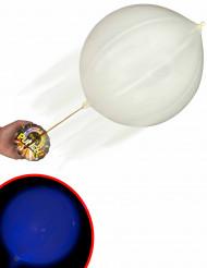 Balão LED punch illooms©