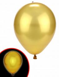Balões LED dourados Illooms ®