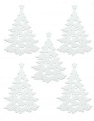 5 Pinheiros brancos Natal
