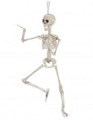 Decoração esqueleto articulado