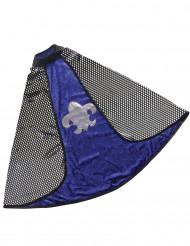 Capa reversível luxo cavaleiro azul menino
