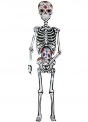 Decoração esqueleto de cartão Dia de los muertos