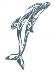 Tatuagem temporária golfinho adulto