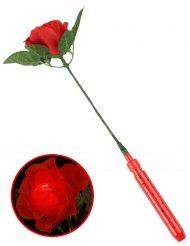 Rosa vermelha luminosa