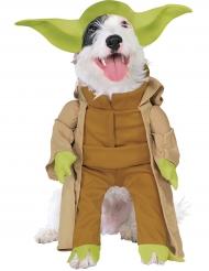 Disfarce Mestre Yoda para cão