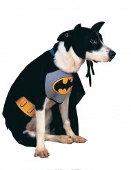 Disfarce para cão Batman™