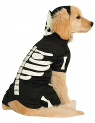 Disfarce para cão esqueleto fosforescente