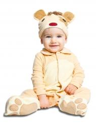 Disfarce ursinho com chupeta luxo bebé