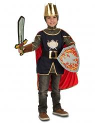 Disfarce cavaleiro com acessórios menino