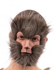 Máscara lobo castanho para adulto