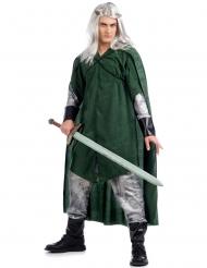 Disfarce elfo medieval homem