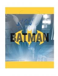 8 Sacos de festa Batman™
