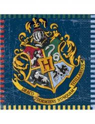 16 Guardanapos de papel Harry Potter™ 33 x 33 cm