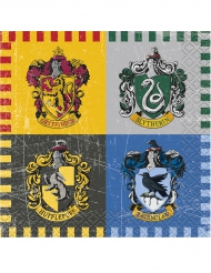16 pequenos guardanapos de papel Harry Potter™
